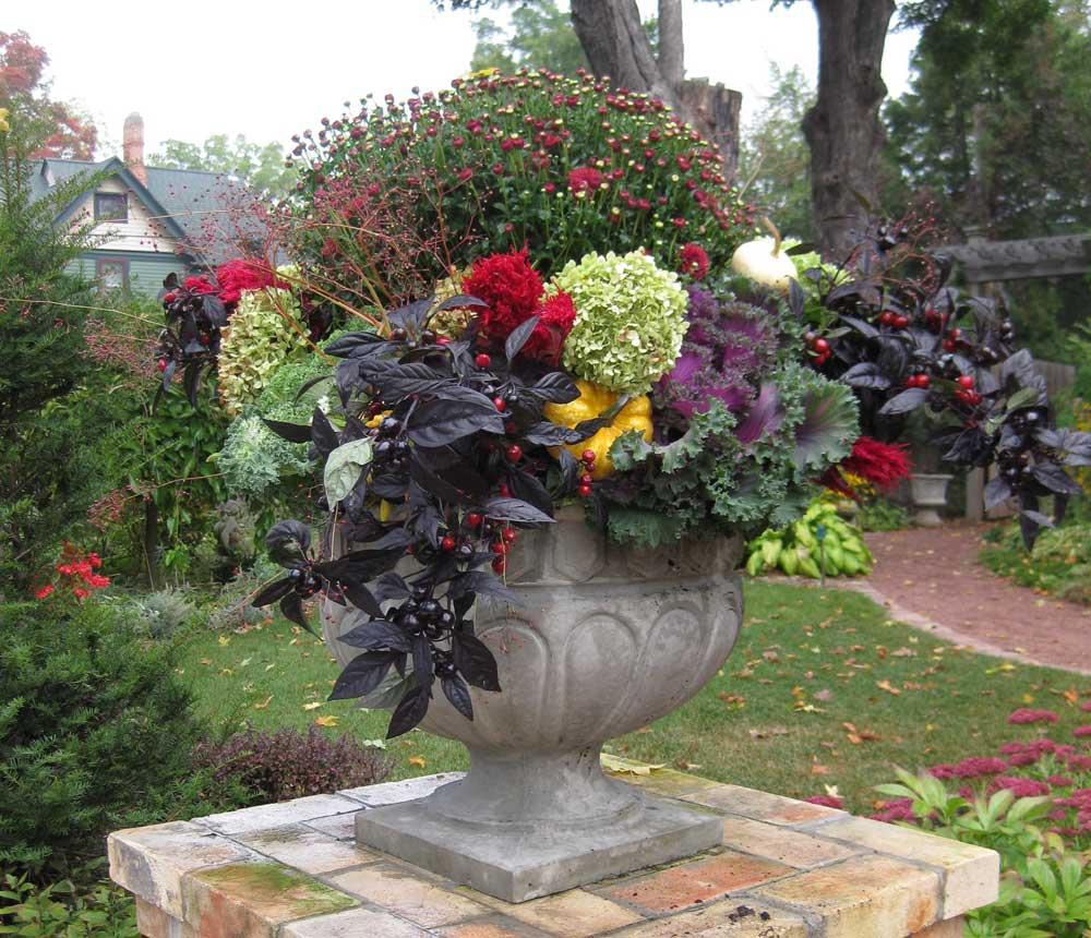 Graziano Gardens Containers Fall