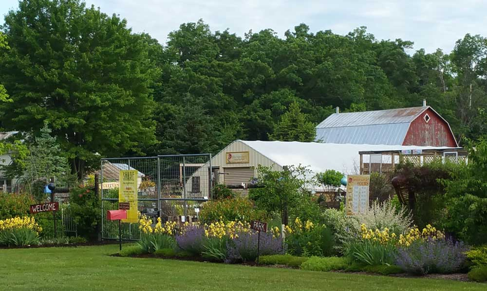 Graziano Gardens Farm